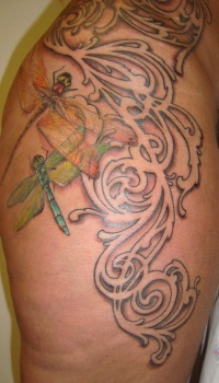 3d dragonfly on tracery background tattoo